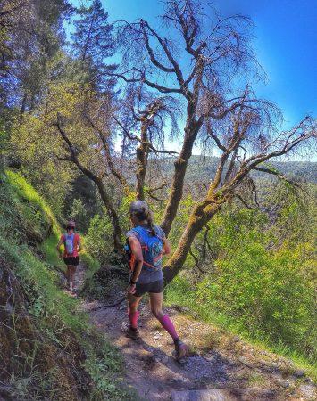 the descent to El Dorado Creek.